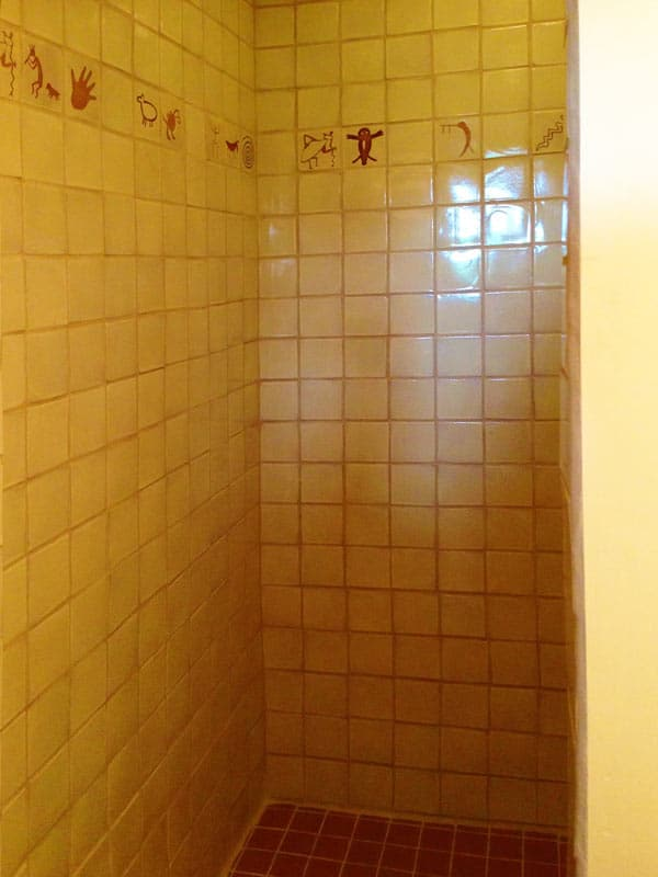 Las Palomas home for sale - custom tile in the shower