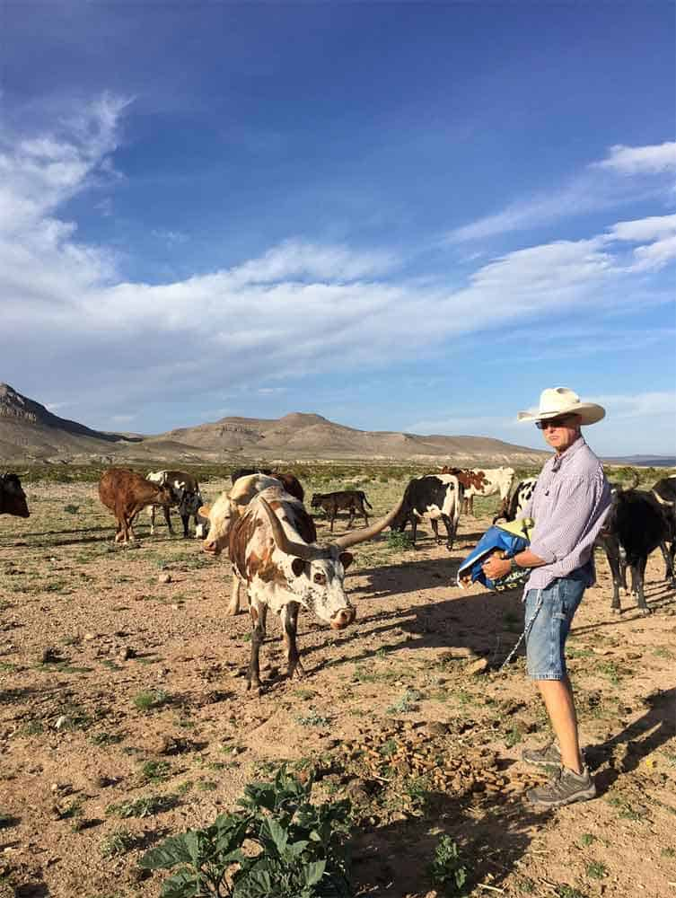 home for sale in southern New Mexico - the true west